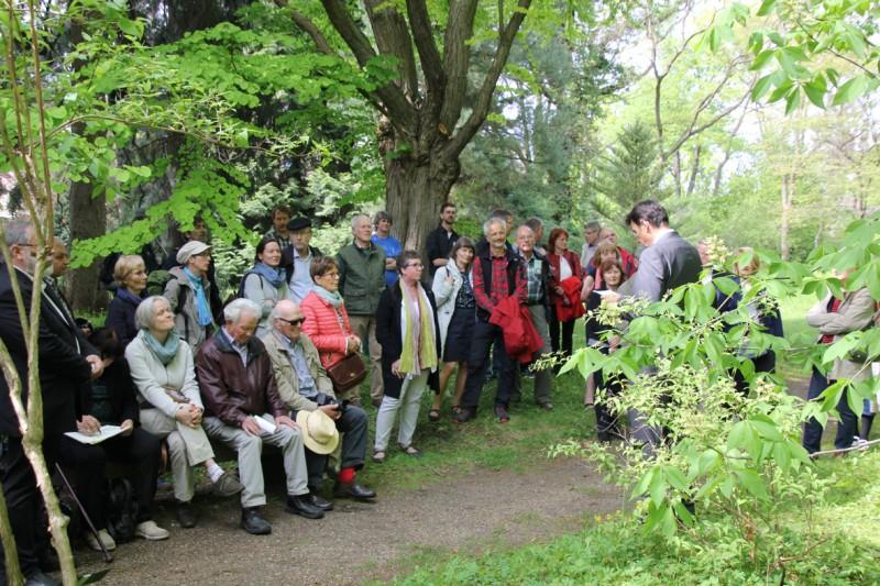 Ansprache von Dr. Ludwig Kronthaler, Vizepräsident der Humboldt-Universität zu Berlin, anlässlich der Kür der Aesculus glabra im Späth-Arboretum. (Foto: Annika Dreilich)
